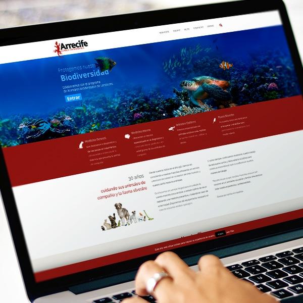 Web Clínica Veterinaria Arrecife – Clínica Veterinaria Arrecife