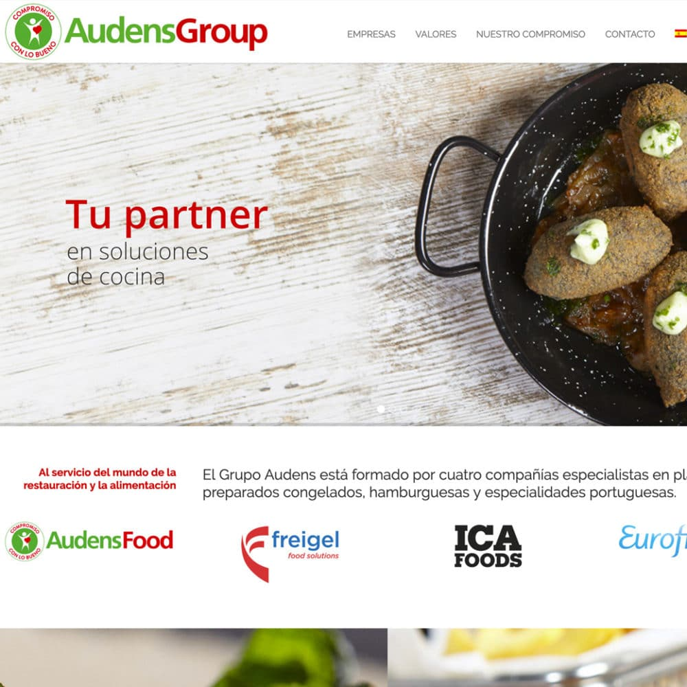 Web Audens Group – Audens Group